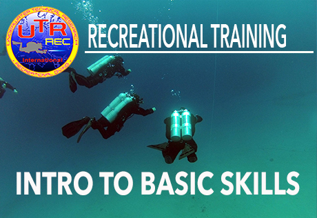 INTRO TO BASIC SKILLS*